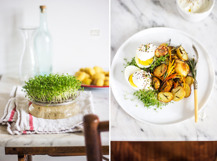 insalata patate novelle e germogli di crescione