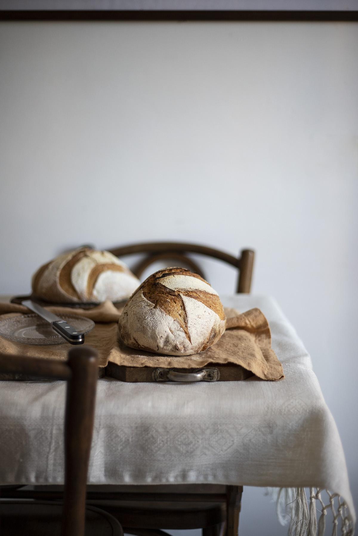 pane mais e tartufo nero