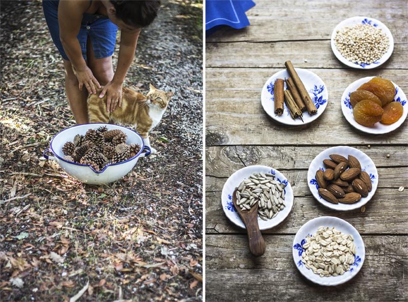 Barrette di cereali e frutta secca